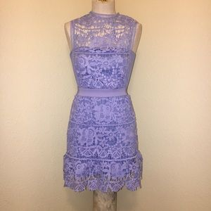 Anthro Romeo and Juliet Couture Purple Lace Dress